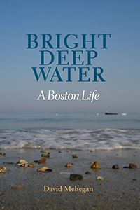 Bright Deep Water book cover